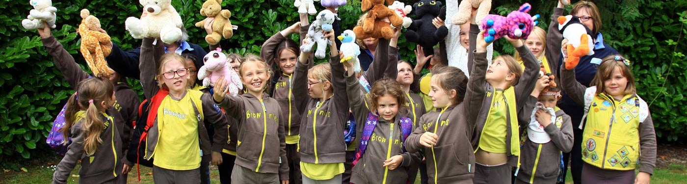 brownies girlguiding hampshire east - descriptive image